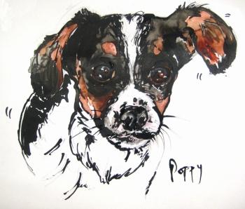"""""""Poppy"""" by Sarah Watson, www.wonkydogs.com"""